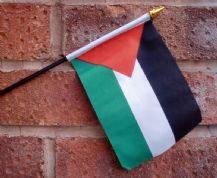 HAND WAVING FLAG (SMALL) - Palestine